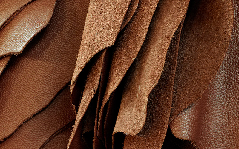 Biopreparation of Brown leather